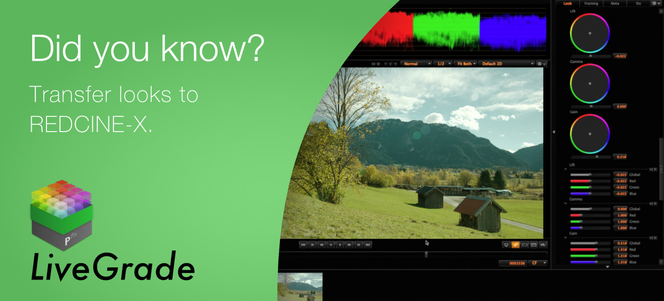 Learn How to Transfer Color Decisions to REDCINE-X!